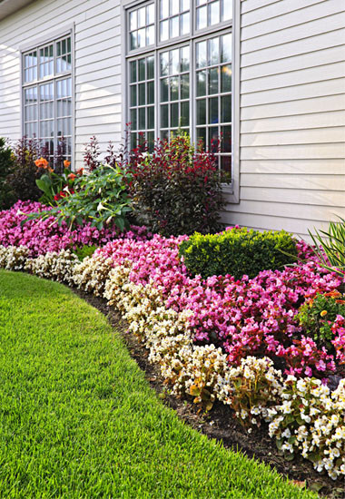 Landscape Maintenance - 11930063